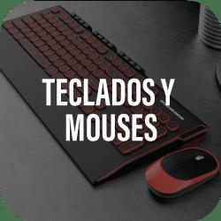 teclados y mouses